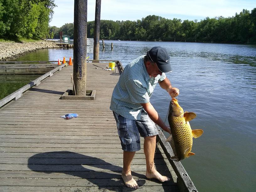 Рыбалка на карпа и сазана