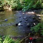 Metzler River Park
