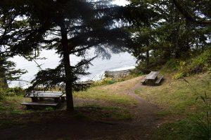 Мыс Араго @ Cape Arago State Park