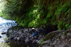 Дир Крик Deer Creek