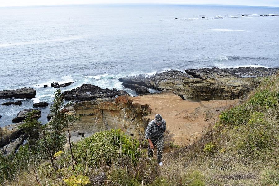 Мыс Араго - Cape Arago