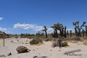Каньон Красного Камня - Red Rock Canyon